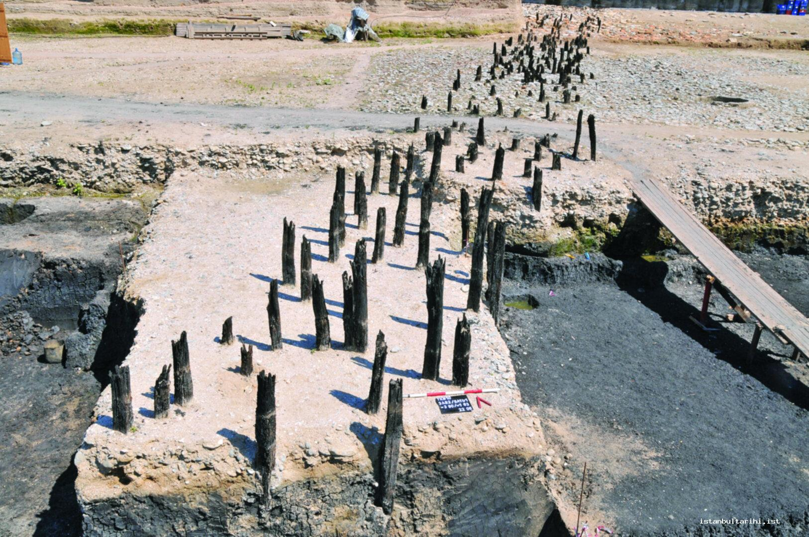 21- Wooden stakes of the pier