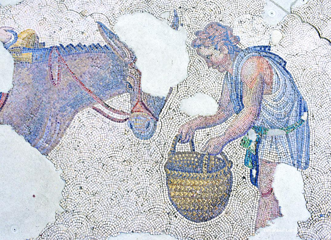 5- A farmer from Constantinople (Great Palace) (Mosaic Museum)
